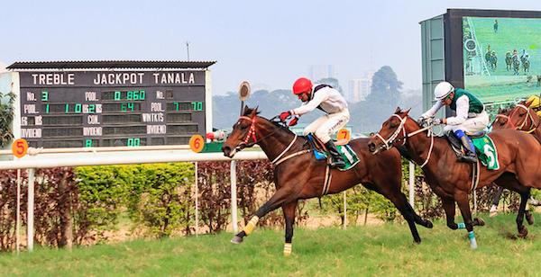 india, racing, sports, betting