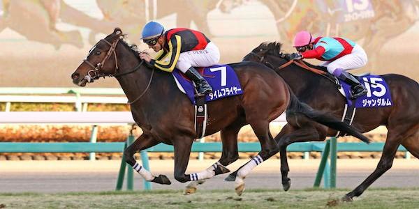 horse-betting, IR licensing,